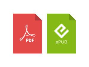 PDF ePUB file format for translation