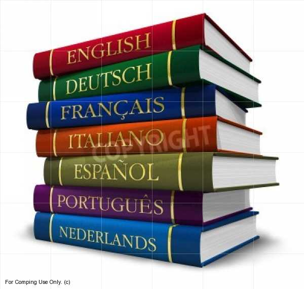 How many words does a professional translator translate per day?