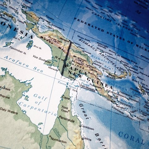 Papua New Guinea is the country with the highest level of language diversity